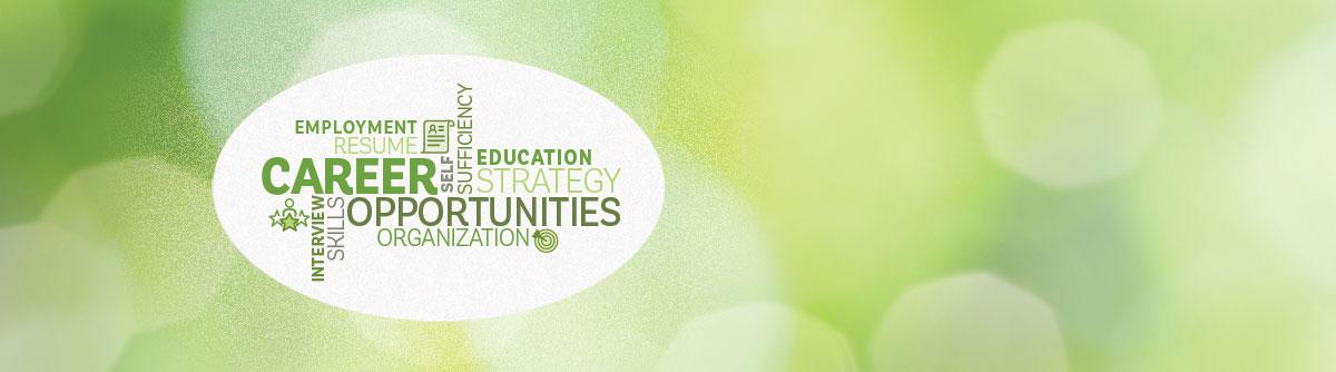 Permalink to: Career Education